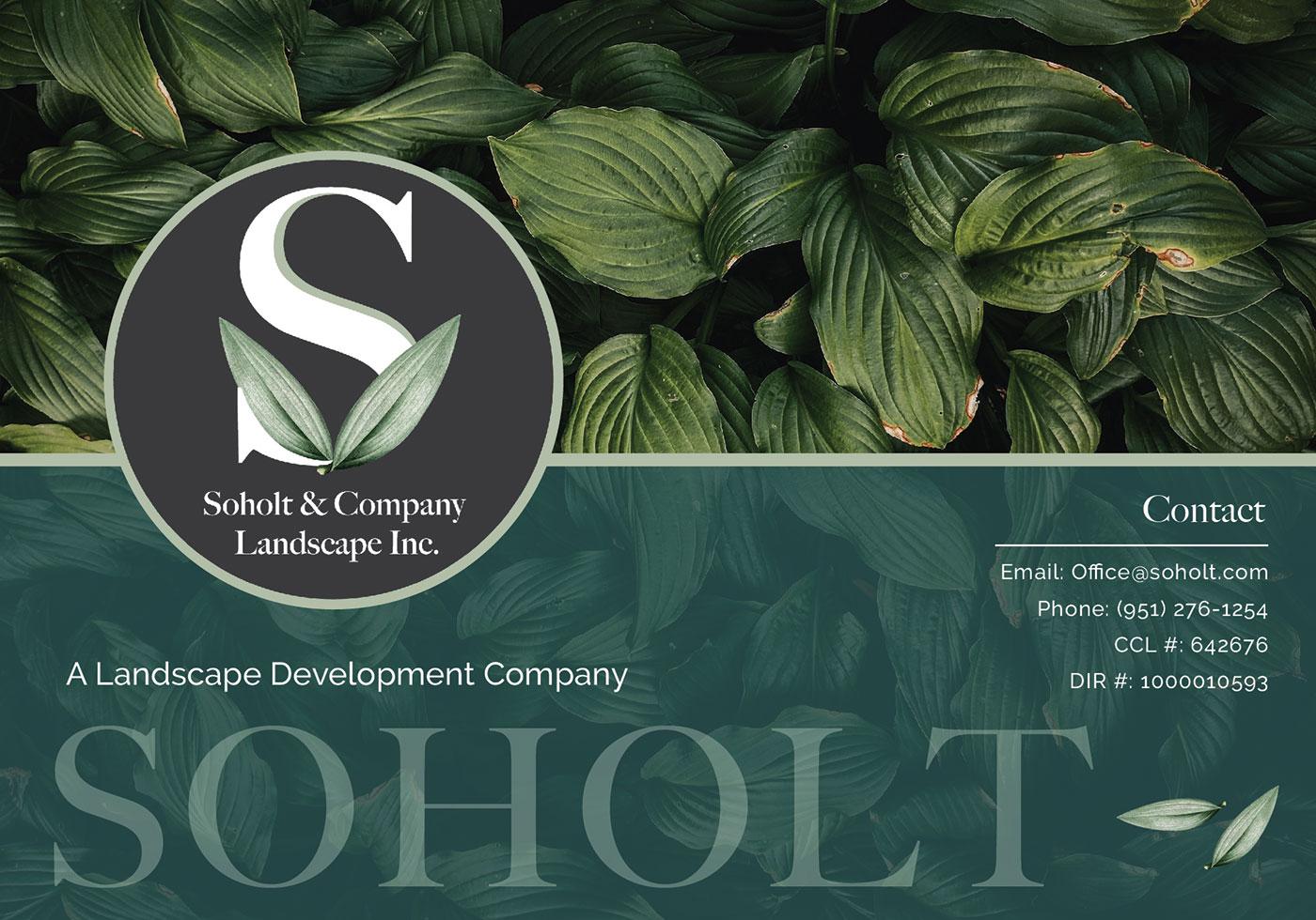soholt web banner