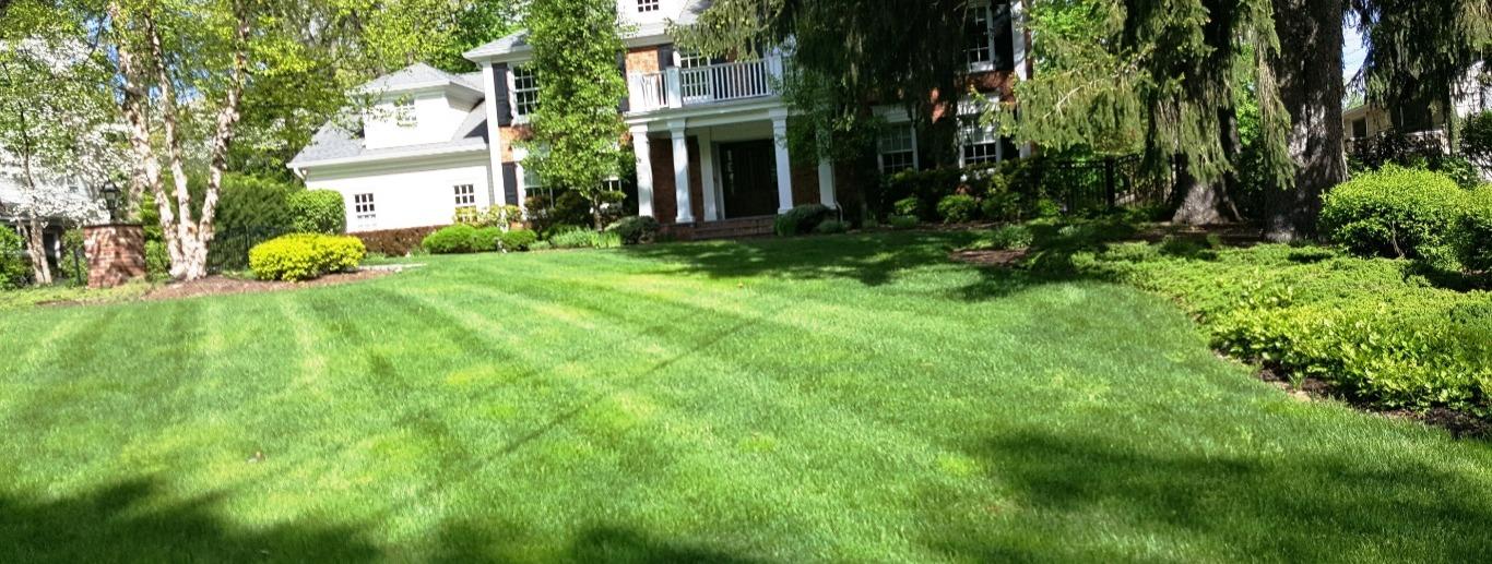 Lawn Care Service,Pest Control Service